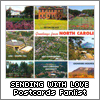 Objects, Toys/Collectibles » Miscellaneous: Postcards